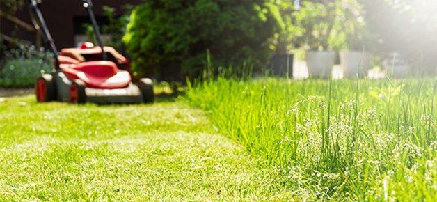 5 tips om uw vastgoedmakelaar te ondersteunen