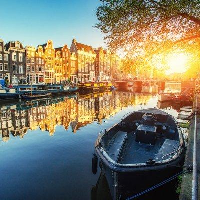 Ons aanbod in Nederland