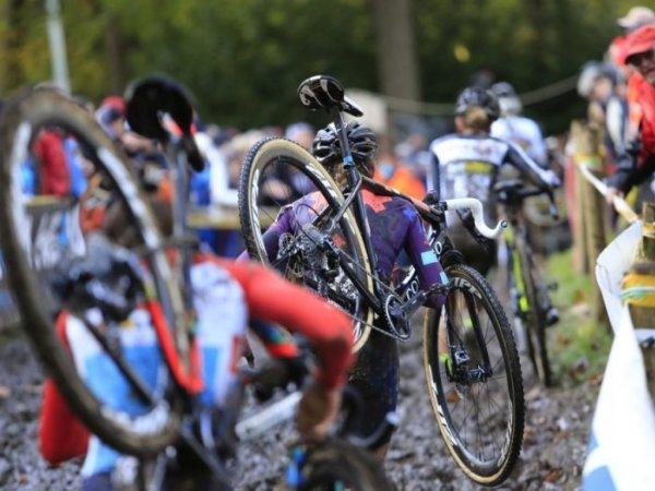 cyclocross gavere vastgoed