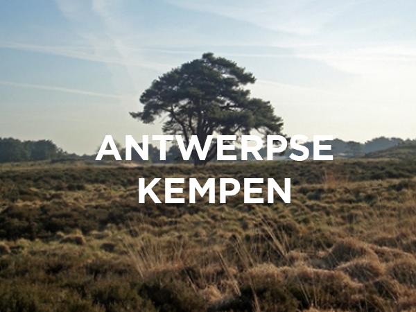 ERA Open Huizen Dag - Antwerpse Kempen