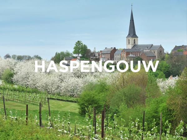 ERA Open Huizen Dag - Haspengouw