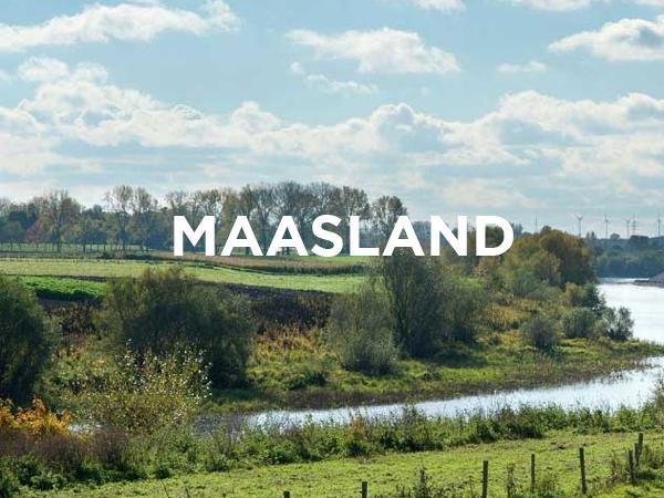 ERA Open Huizen Dag - Maasland