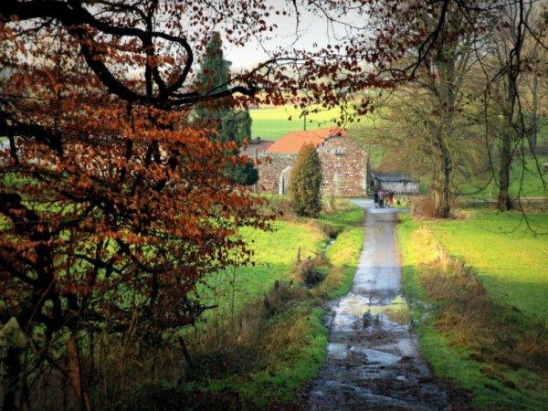 Immobilier rural à Sprimont