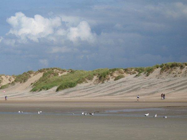 vakantie-of-wonen-aan-de-kust-koksijde-oostduinkere