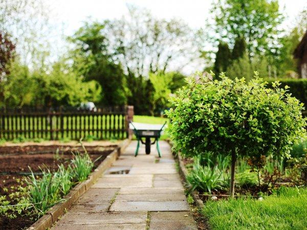 Hoe Verkoop Ik Mijn Huis - Verzorg Tuin - ERA Vastgoed Vandenbussche Veurne