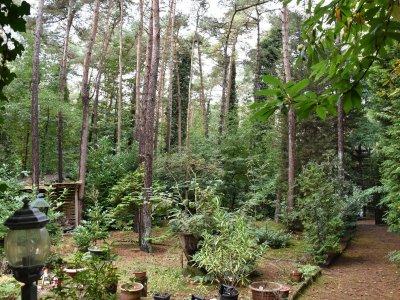 Recreatiegrond (1.000m²) gelegen in een groene omgeving